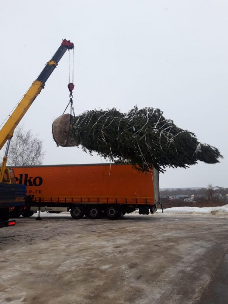 auto2help,  Аренда манипулятора г.Жуковский -  Наркомвод. Погрузка дерева 11 метров с длинномера в манипулятор, чтобы довезти на участок.