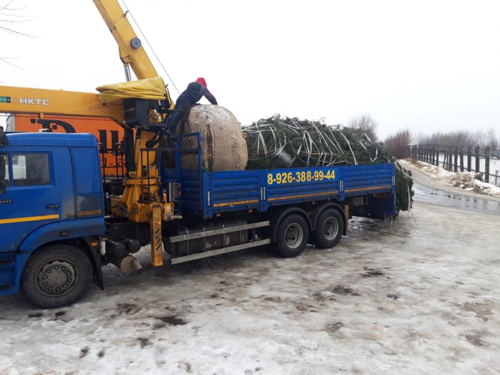 auto2help,  Услуги манипулятора г.Жуковский -  Наркомвод.Заказали манипулятор для перевозки  большой елки с комом земли 4 тонны